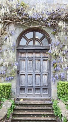 Wisteria, Wakehurst Place, Kew Royal Botanical Gardens, West Sussex, England