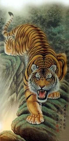- You are in the right place about traditional tattoo Here we offer you the most beautiful pictures - Tattoo Drawings, Body Art Tattoos, Tiger Tattoo Sleeve, Wild Animal Wallpaper, Japanese Tiger Tattoo, Lion Photography, Tiger Tattoo Design, Year Of The Tiger, Wildlife Art