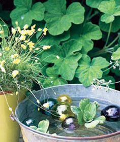 Water has a calming effect, and you can set up a water garden in a few minutes. Fill a metal pail or washtub with floating candles; low-maintenance aquatic plants, such as water lettuce, or delicate glass baubles.