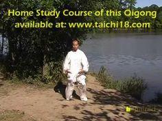 Tai Chi Qigong Shibashi - Set 2 - YouTube