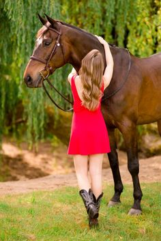 Equine Photography Dallas Texas And Show Horses On Pinterest