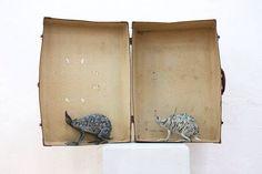 Lo zoo surreale di Alice Zanin pieno di animali di carta che hanno la leggerezza del gioco e la pesantezza della natura #arte