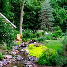 Backyard With Woodland Feel
