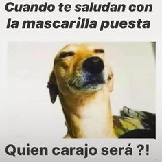Funny Baby Jokes, Mexican Funny Memes, Mexican Humor, Funny Spanish Memes, Spanish Humor, Hilarious, Good Morning In Spanish, Black Spiderman, Funny Cards