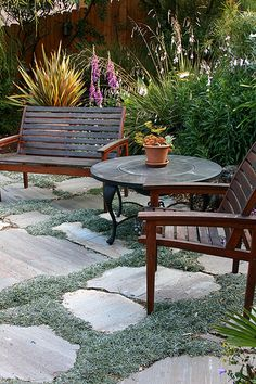 stone and low grass patio