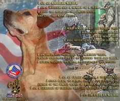 This is Gabe, the 2012 American Hero Dog in the Military category.  Gabe loved nothing more than serving the people of the United States of America. This is the Soldiers Creed...