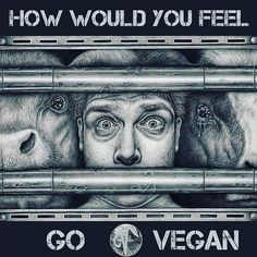 in a parallel universe how would you feel go #vegan #compassion