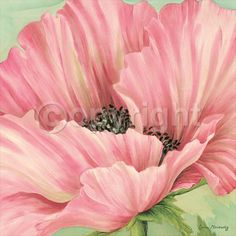 Pink Poppy Flower Head by Lynne Misiewicz  |  Item #: 12736524A