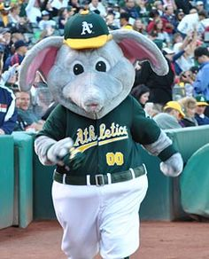 Stomper represents the Oakland A's of the MLB. Baseball Mascots, Team Mascots, Football, Baseball Wall, Raffle Baskets, American League, National League, Oakland Athletics, World Of Sports