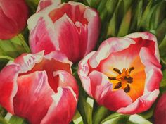 'Large Tulip Painting - Pink Red Tulips in Watercolor - large realistic Flower Painting by Doris Joa Watercolor Paintings For Sale, Tulip Painting, Watercolor Video, Watercolour Tutorials, Watercolor Flowers, Watercolor Art, Flower Paintings, Tulips Flowers, Red Tulips