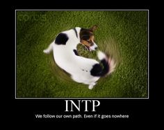 I am not an INTP personality type, but this made me laugh!!