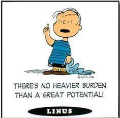 Linus quote