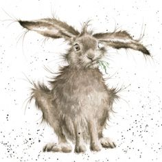 paintings of hares - Google Search