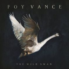 Foy Vance recently released The Wild Swan, an album that moves me to my core. His voice has the ability to shatter me. That voice is joy, love, fear, anger, hope, and sadness. We move from the cool gr
