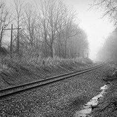 Train tracks on Ilford Silvermax black and white film. Okemos Michigan. #photo #photography #scenic #landscape #beautiful #film #blackandwhite #travel #puremichigan #outdoors #nature #train #traintracks #ilford #silvermax