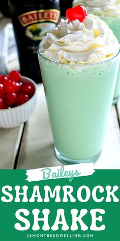 This Baileys Shamrock Shake is the BEST of both worlds! Rich Baileys Irish Cream meets McDonald's Copycat Shamrock Shakes. This delicious dessert shake will be the hit of the night.