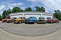 Decades of Mustangs...few missing...