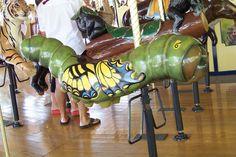 St. Louis Zoo Carousel  Tiger Swallowtail Caterpillar