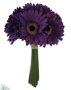 Purple Daisy bouquet! I LOVE this look - simple and clean. Bridesmaid or for junior?