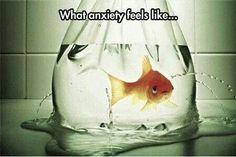 My life :(.......
