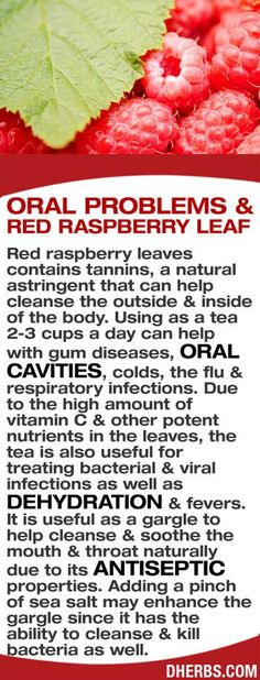 HEALTHCARE  Diet to lose weight  Red Raspberry Leaf Tea Benefits  HRFnd
