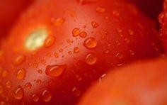 Vellutata al pomodoro e arance - Ricetta per preparare la vellutata al pomodoro e arance, una ricetta sana e nutriente per servire una zuppa deliziosa e particolare che con questo freddo è un vero piacere per il palato.