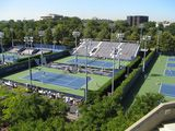 US Open Tennis. My 18th year of attendance.