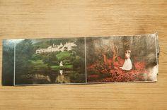 Photographs - great colour