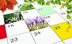 Großer Gartenkalender