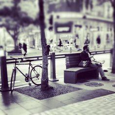 Lambton Quay, Wellington, New Zealand - photo: Paper & Ash
