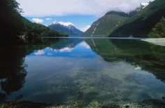 Lake Te Anau, South Island