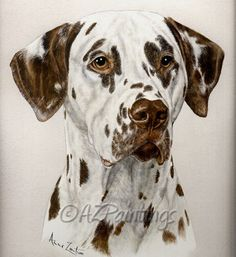 Animal paintings, dog art, and pet portraits. Artist Anne Zoutsos creates beautiful paintings of your dog, cat or horse in oils. Animal Paintings, Animal Drawings, Dog Drawings, Pitbull, Pet Dogs, Dog Cat, Watercolor Animals, Watercolor Painting, Watercolors