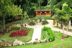 El paisaje cultural cafetero de Colombia candidata a octava maravilla del mundo