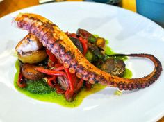 An Octopus Lover's Guide to New York City - Eater NY