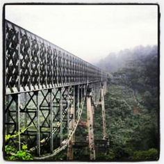 Cirahong #bridge #tasikmalaya #tree #railway - @ammy rachmawati- #webstagram Brooklyn Bridge, Bridges, World, Building, Travel, Viajes, Buildings, Destinations, The World