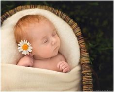 We lovingly welcomed Sylvie Violet into our family on April LJHolloway Photography is a Las Vegas Newborn Photographer. Red Hair Baby, Girls With Red Hair, Newborn Photographer, Family Photographer, Redhead Baby, New Baby Pictures, Ginger Babies, Cute Baby Clothes, Baby Girl Newborn