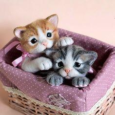 Cute Needle felted project wool animals kitten cats(Via @kittenblackua)