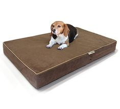 Large Dog Bed Premium Solid Memory Foam Pet Bed  Dog Mat with Waterproof Cover  Color Chocolate  Size 55x47x4 ** Amazon most trusted e-retailer #BedsforPets
