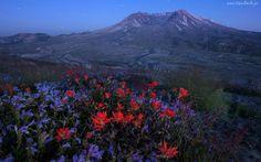 Wulkan, Mount St. Helens, Łąka, Noc, Gwiazdy