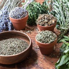 In our online herbal courses, we present science, practical experience, and traditional wisdom as three legs of the herbalism stool. Included in the traditional wisdom are traditions such as #Ayurveda and Traditional Chinese Medicine (#TCM), which have and continue to influence Western herbalism, and are interwoven in the fabric and practice of #herbalism. These traditions are broader than just herbalism, and include their own philosophies and understandings to make sense of the world we…
