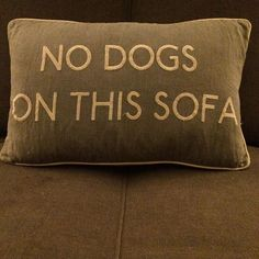 #pillow #dog #weimaraner If only they were able to read it