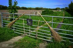 Taylors Meadow in Sulby - Has this got a Witchcraft connection? © Peter Killey - www.manxscenes.com