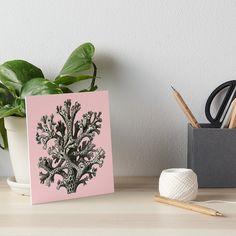 « Coral, corail, fond marin, plante marine,  » par LEAROCHE