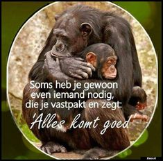 Zieer.nl - grappige plaatjes, grappige foto's, grappige videos, moppen, de beste moppen Romantic Quotes, Love Quotes, Funny Quotes, Sef Quotes, Dutch Phrases, Respect Quotes, Spiritual Words, Have A Happy Day, Facebook Quotes