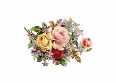 ___flowers forever and ever / 🌾 • #nonnalietta #knitwear #flower #inspiration