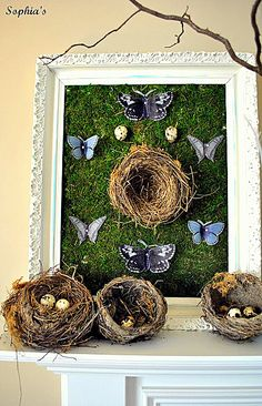 Antiqued frame backed with sheet moss, collected bird nests & butterfly graphics printed on vellum; free printables from Graphics Fairy - http://thegraphicsfairy.com/  #DIY #spring