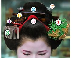 Mylokoville — Anatomy of Maiko and Geiko