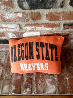 Oregon State Beavers Pillow, hubbys christmas present I am making.