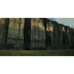 'The Maze Runner' Review ❤ liked on Polyvore featuring maze runner
