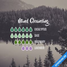 Mind Cleansing - Essential Oil Diffuser Blend It probably won't take this much. I'd probably half it. My diffuser only needs 10 drops total, max Essential Oils Guide, Essential Oil Uses, Doterra Essential Oils, Young Living Essential Oils, Doterra Blends, Essential Oil Combinations, Essential Oil Diffuser Blends, Aromatherapy Oils, Beauty Box